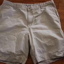 Nice Columbia Shorts 40 Cotton Photo