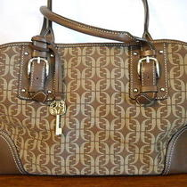 Nice Fossil Bag/purse Photo