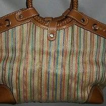 Nice Fossil Shoulder Handbag Photo