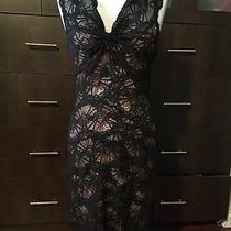 Nicole Miller Collection Dress Size Photo
