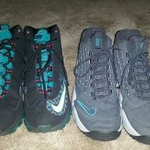 Nike Air Griffin Collection (Size 13) Photo
