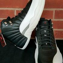 Nike Air Jordan Retro 12 Xii Playoff Photo