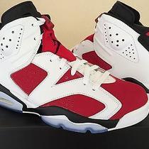Nike Air Jordan Retro 6 Carmine Photo