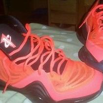 Nike Air Penny 5 Photo