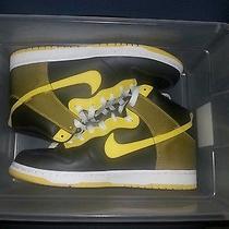 Nike Dunk Photo