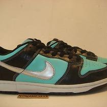 Nike Dunk Low Pro Sb Aqua Tiff Supreme Blazer Stussy Unkle Pigeon Skunk Doom 10 Photo
