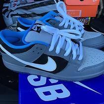 Nike Dunk Sb Petosky Premier Photo