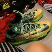 Nike Kd 6 Liger Photo