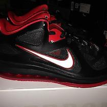 Nike Lebron 9 Low Bred Photo