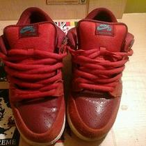 Nike Sb Brickhouse Dunks Used Size 8.5 Photo