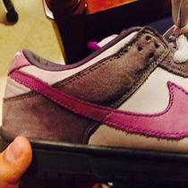 Nike Sb Purple Pigeon Photo