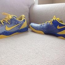 Nike Shedding Skin Kobe's  Photo