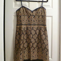 Nine West Dark Purple/bronze Lace Overlay Nice Dress sz.8nwot  Photo