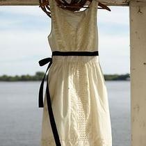 Nip Anthropologie Camilla Dress Size M Color Creme Rare 5star  Photo