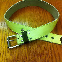 Nixon Belt Small Wholesale Price Photo