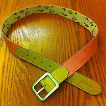 Nixon Womens Belt Wholesale Price Photo