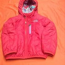 North Face Jacket for Infant Photo