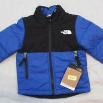 North Face Toddler Boys 2t Balanced Rock Jacket Royal Blue Black Warm New 70 Photo