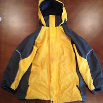 North Face Winter Jacket (Children's Large) Photo