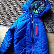 Northface Childrens Winter Coat Perrito Reversible Insulated Photo