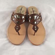 Nwb Sam Edelman Treva Womens Sandals Flip Flops Size 8.5 M Brown Gold New Shoes Photo