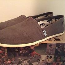 Nwb Toms Classic Ash Canvas 9.5 M Photo