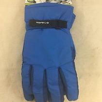 Nwd Columbia Youth Core Gloves Blue Medium (Mm) Photo