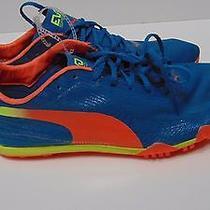 Nwob Puma Men's Bolt Evospeed Electric Track and Field Shoe (Size 9.5) Photo