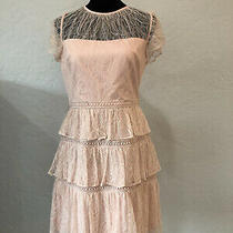 Nwot Adrianna Papell Lace Tiered Blush Colored Dress Size 4 Photo