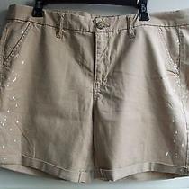 Nwot American Eagle Outfitters Khaki Paint Splattered Bermuda Shorts Size 16 Photo