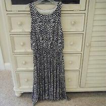 Nwot Ann Taylor Loft Dress Size Xs New Photo