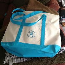 Nwot Aqua Turquoise Zip Top Canvas Beach Bag Hand Painted Sand Dollar  Photo