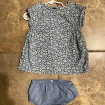 Nwot Baby Gap Girls Blue Floral Dress Set Size 3-6 Dress & Diaper Cover Smocked Photo