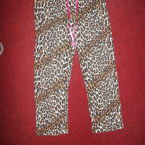 Nwot Betsey Johnson  Cheetah Leopard Print  Stretch Pajama Bottom Pants Size M Photo