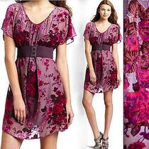 Nwot Betsey Johnson Purple Pink Czech Rose Velvet Burnout Belt Dress 268 Photo