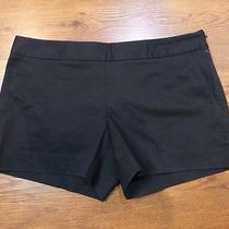 Nwot Express Black Side Zipper Shorts Sz 6 Photo