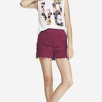 Nwot Express High Rise Magenta Crochet Shorts Sz S Photo