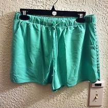 Nwot Forever 21 Mint Dolphin Shorts With Studs Size L Photo