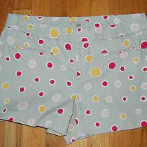 Nwot Gap Gray Cotton Flat Front Polka Dot Shorts / Women's Size 8 Photo