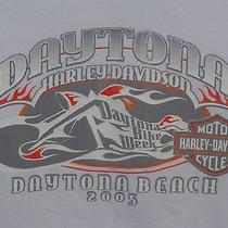 Nwot Harley Davidson Daytona Beach Fl 2005 Bike Week Size M White Babydoll Shirt Photo