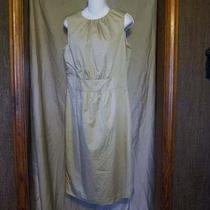 Nwot Liz Claiborne Tan Career Party Dress Nice Size 8 Photo