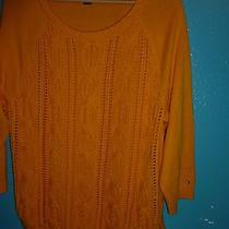 Nwot Tommy Hilfiger Yellow Round Neck Cable Knit Rib Trim Sweater Xl Photo