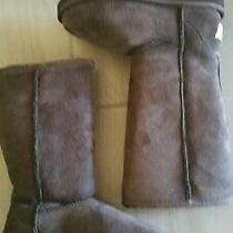 Nwot-Ugg Boots Youth / Kids Size 1 Classic Tall Chocolate Brown 5229 Photo