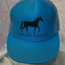 Nwot Vintage Horse Tennessee Walkers Foam Mesh Trucker Snapback Aqua Blue Hat Photo