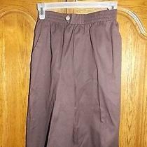 Nwot Women's  Size 8 Petite Dark Brown Classic Elements Pants Str Leg  Photo