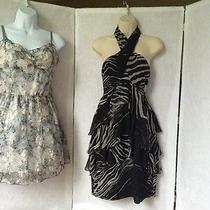 Nwot Zara Size Medium Dresses - Beautiful Dresses - Great Price Photo