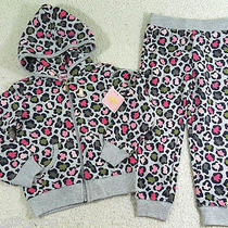 Nwt 2 X  Juicy Couture Todd Girl Basic Jog Hoodie  Pants Tracksuit Set Sz 3t Photo