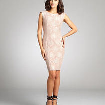 Nwt 288 French Connection Intimate Pink Blush Luxury Lace Sheath Dress Sz 2 Photo