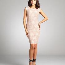 Nwt 288 French Connection Intimate Pink Blush Luxury Lace Sheath Dress Sz 2 Photo