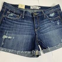Nwt Abercrombie and Fitch Womens Jean Denim Blue Shorts Size 8 Photo